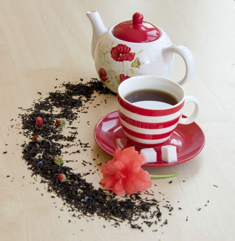pasiasta filiżanka z herbatą na spodeczka kawałkach cukrowi sześciany, semicirc obraz royalty free