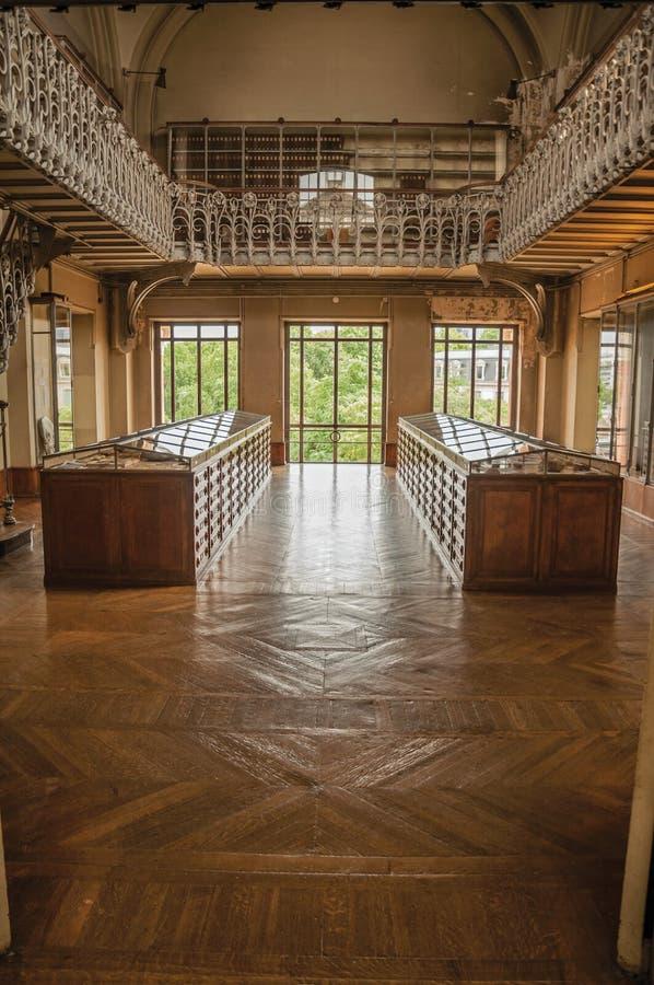 Pasillo con los gabinetes y exhibición fósil en la galería de la paleontología y de la anatomía comparativa en París foto de archivo