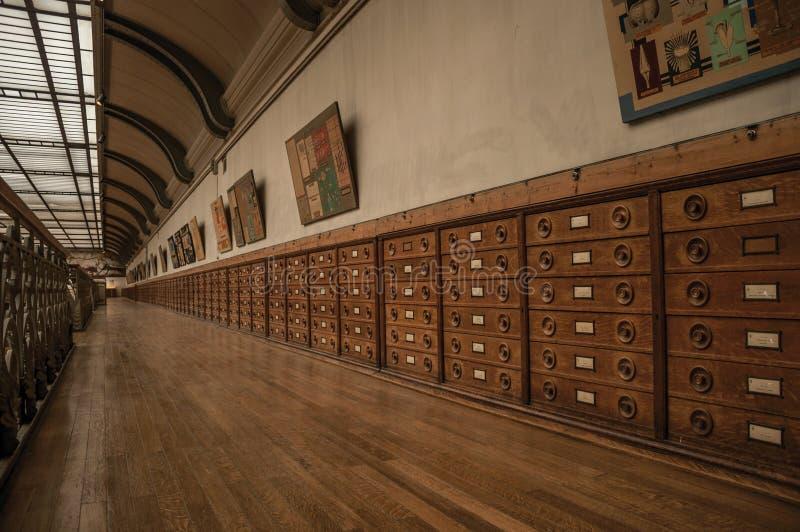 Pasillo con los gabinetes y exhibición fósil en la galería de la paleontología y de la anatomía comparativa en París imagen de archivo