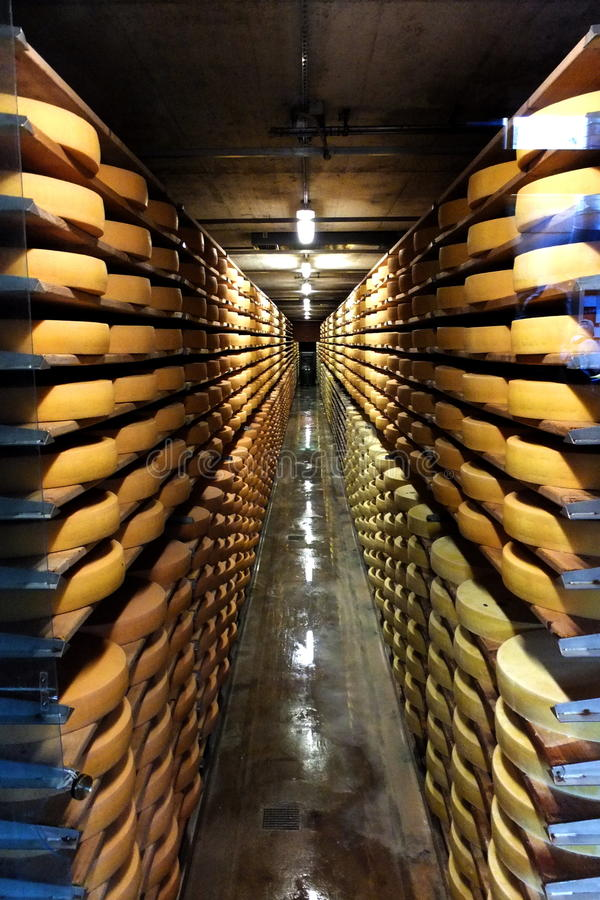 Pasillo de las ruedas del queso gruyere foto de archivo