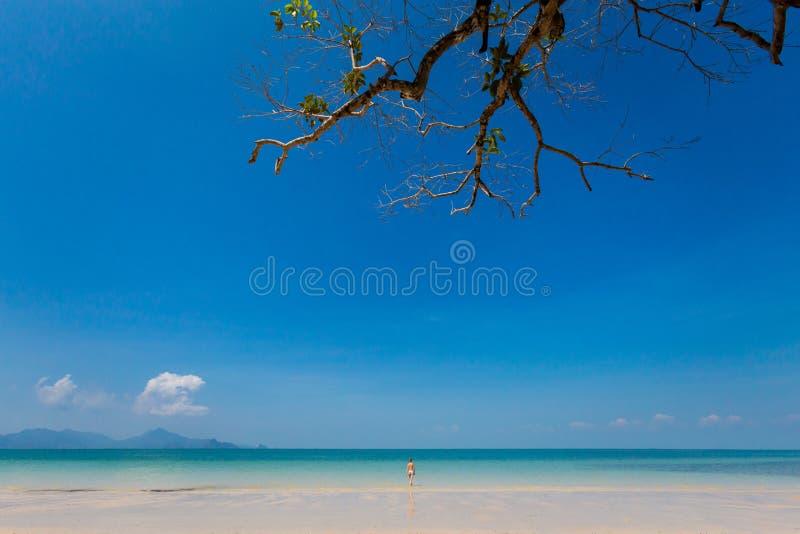 Pasir Pantai Tengkorak Cenang Langkawi image libre de droits