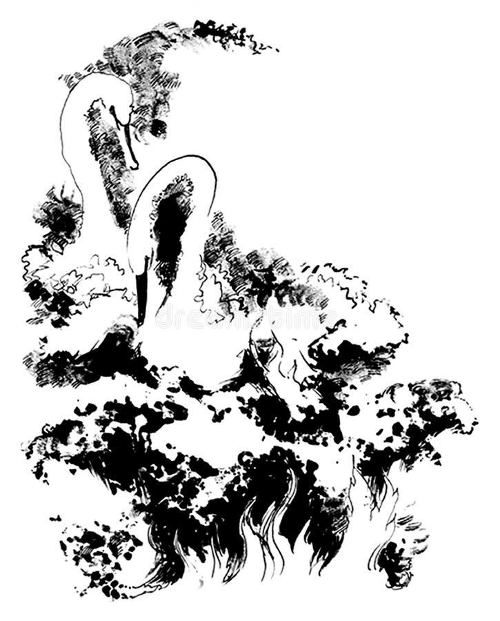 pasja ilustracji