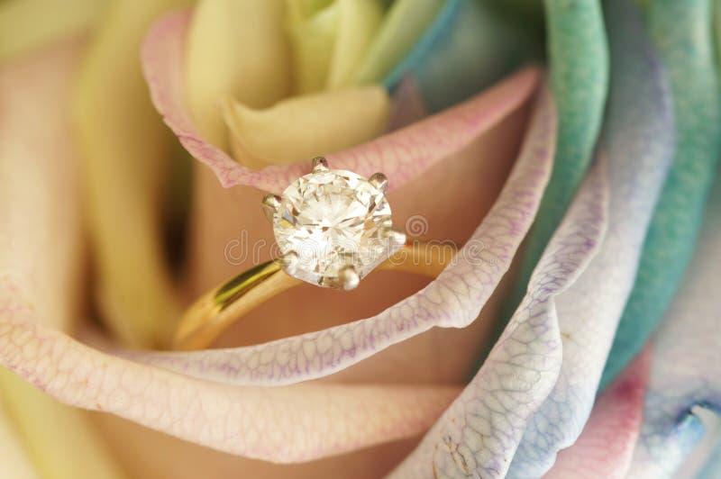 Pasjansu pierścionek na wzrastał fotografia royalty free