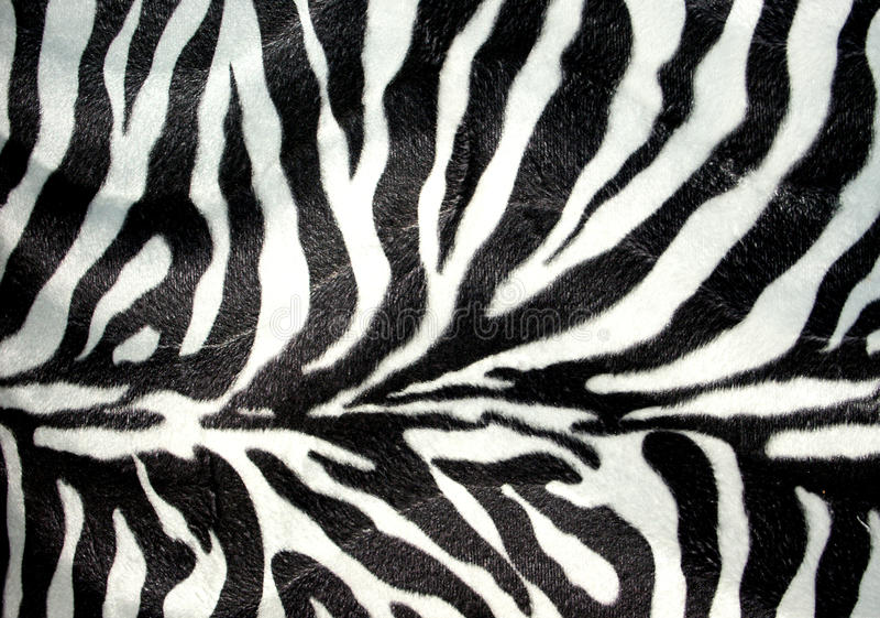 paskuje zebry ilustracja wektor