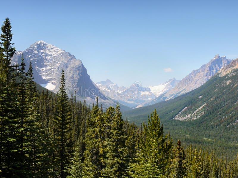 Pasmo Górskie Krajobrazowy widok, park narodowy, Kanada zdjęcia royalty free