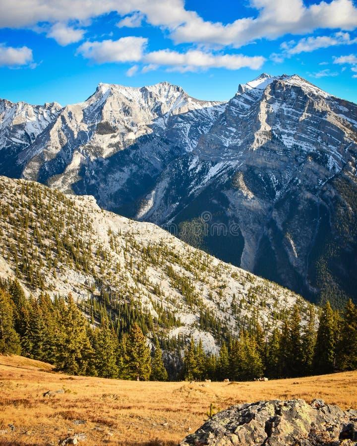 Pasmo Górskie w Skalistych górach w jesieni obrazy royalty free