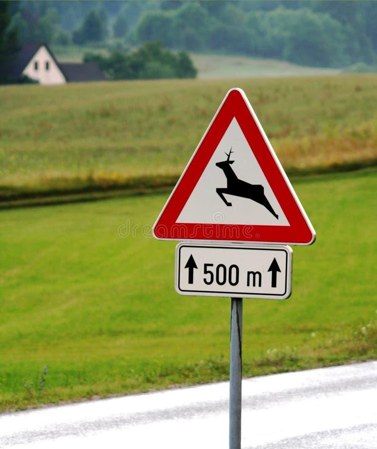 Paso de los ciervos de la señal de tráfico fotografía de archivo