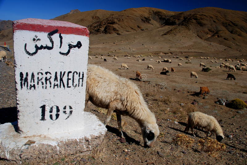 Paso de montaña del n'Tichka de Tizi. Marruecos fotografía de archivo