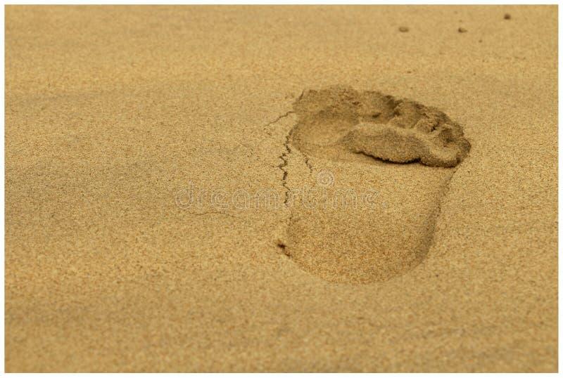 Paso en la playa fotos de archivo libres de regalías