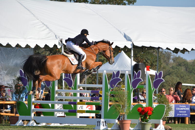 Paso Robles Horse Park Jumping Grand Prix royalty free stock photography