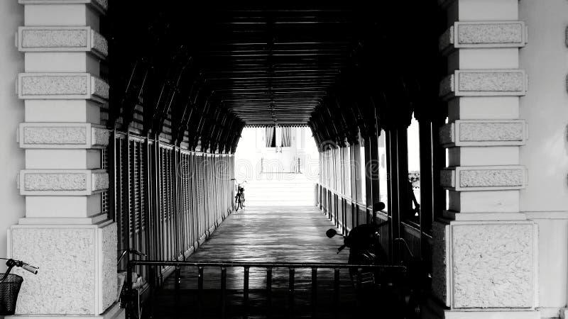 Paso sobre el puente en el parque imágenes de archivo libres de regalías