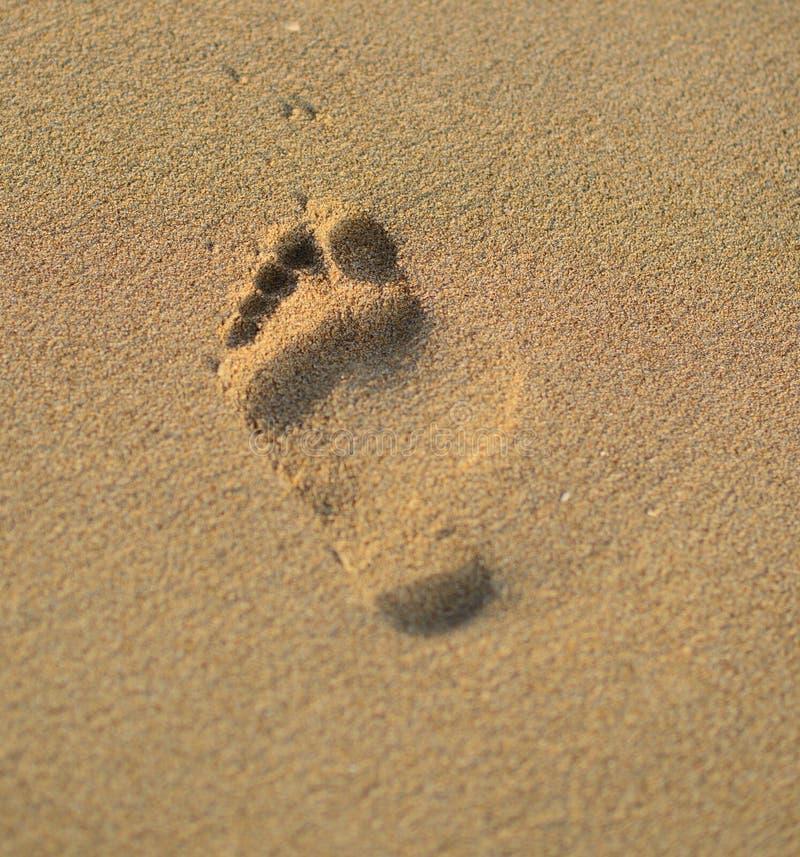 Paso y playa fotografía de archivo libre de regalías