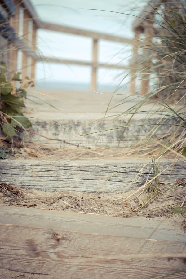 Download Pasos de la playa imagen de archivo. Imagen de verano - 42429577