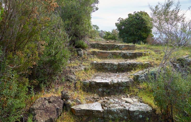 Pasos de piedra en la colina imágenes de archivo libres de regalías