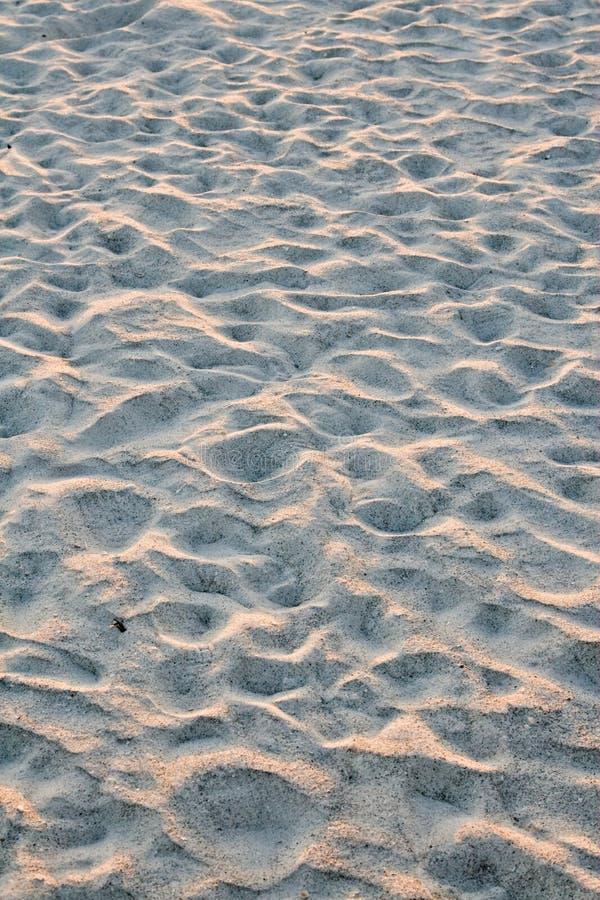 Pasos en la arena, Sarasota, la Florida imagenes de archivo