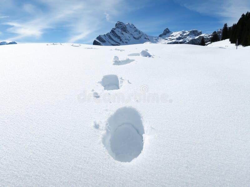 Pasos en la nieve fotografía de archivo libre de regalías
