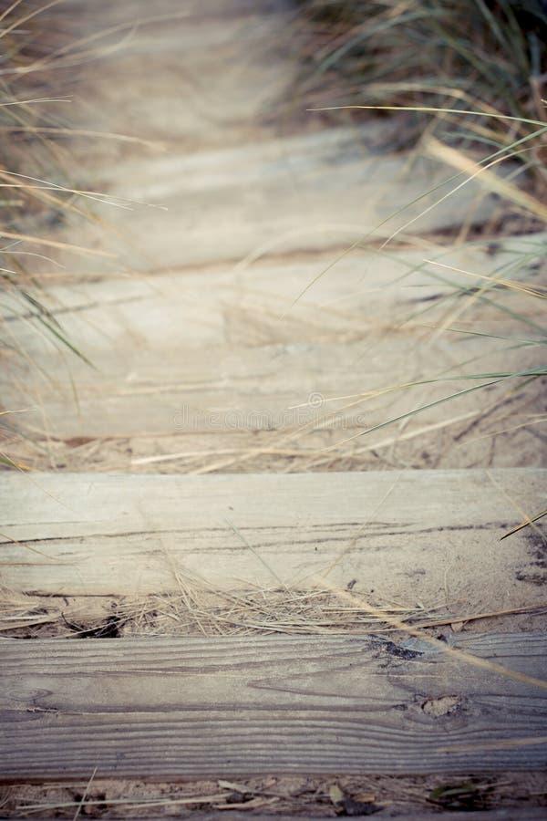 Download Pasos en la playa imagen de archivo. Imagen de michigan - 42429779