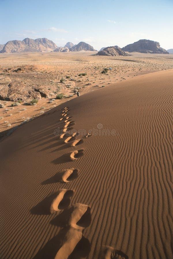 Pasos en las dunas foto de archivo