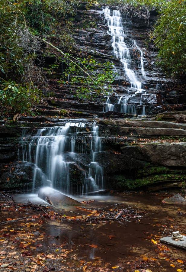 Pasos y hojas del ih de las cascadas en el agua foto de archivo libre de regalías