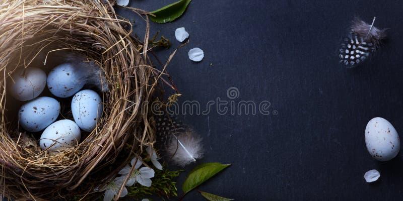 Pasqua felice; Le uova di Pasqua in nido e molla fioriscono sulla tavola fotografia stock libera da diritti