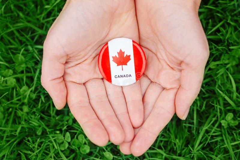 Passa le palme che tengono intorno al distintivo con la foglia di acero canadese bianca rossa della bandiera, sul fondo della nat fotografia stock libera da diritti
