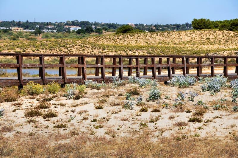 Download Passadiço foto de stock. Imagem de plantas, footbridge - 26517634