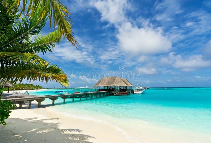 Passadiço que conecta o molhe em maldives imagem de stock
