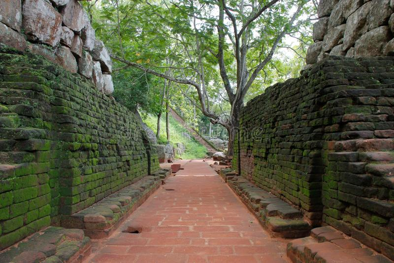 Passage aan Leeuwenrots in Sigiriya doorstaan en die met mos wordt gekweekt stock fotografie