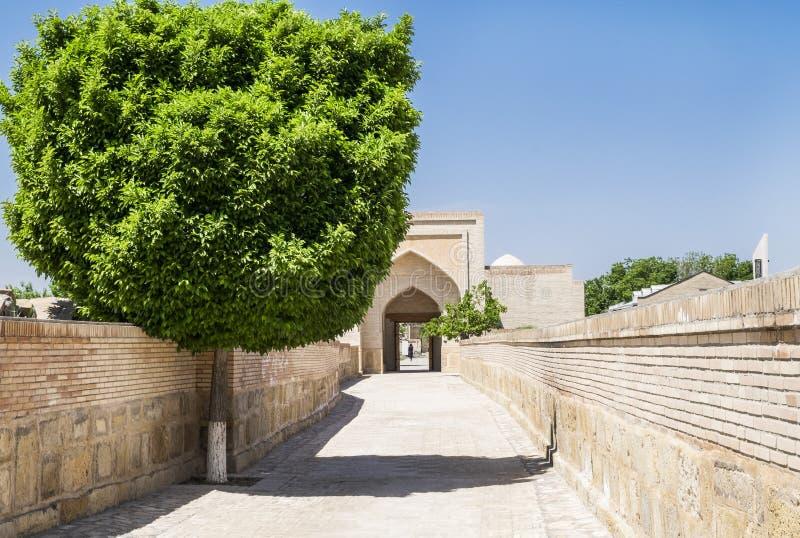Passage avec un bel arbre à l'intérieur du complexe commémoratif de Khoja Bahauddin Nakshband, Boukhara, l'Ouzbékistan image stock