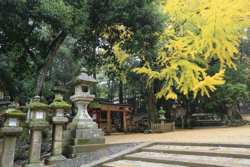 Passage couvert à Kasuga Taisha à Nara, photos stock