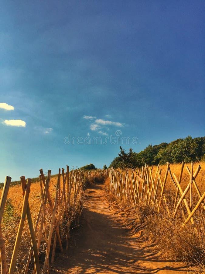 Passage couvert à l'itinéraire aménagé pour amateurs de la nature de Kio-Mae-casserole photo stock