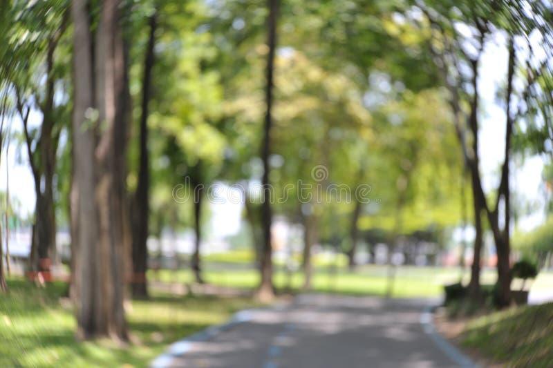 Passage couvert avec le bokeh spécial en parc image libre de droits