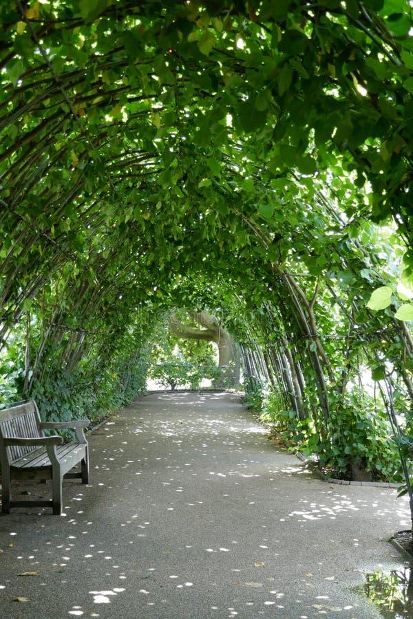 Passage couvert de jardin images libres de droits