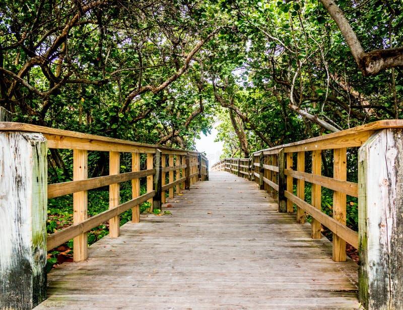 Passage couvert en bois d'accès de plage images stock