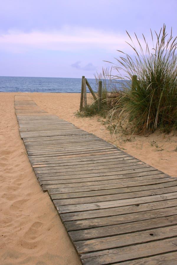 Passage couvert en bois vers l'océan photos libres de droits