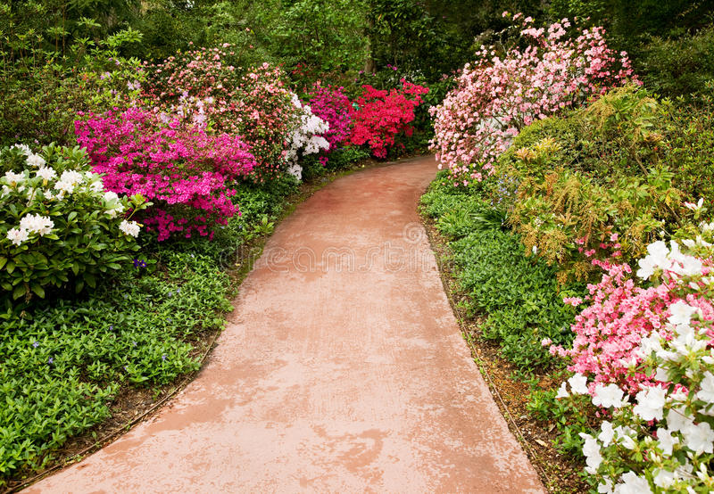 Passage couvert par le jardin de fleur image stock