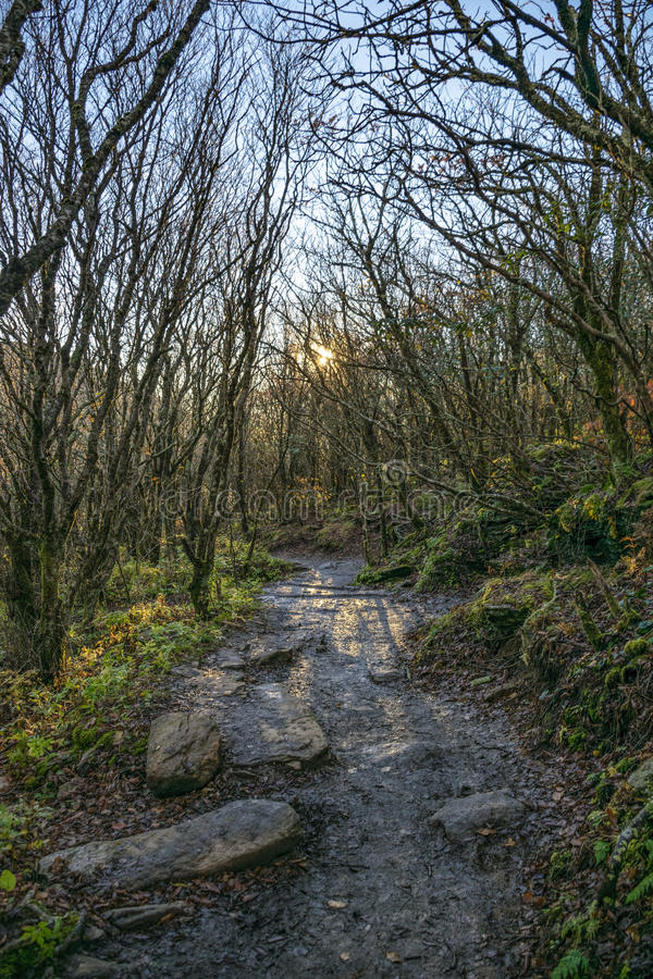 Passage couvert scénique rampant au lever de soleil dans Ridge Mountains bleu photos libres de droits