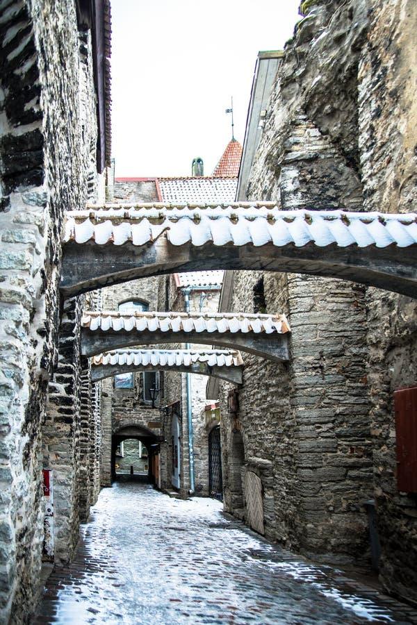 Passage för ` s för St Catherine med insnöade Tallinn royaltyfria foton