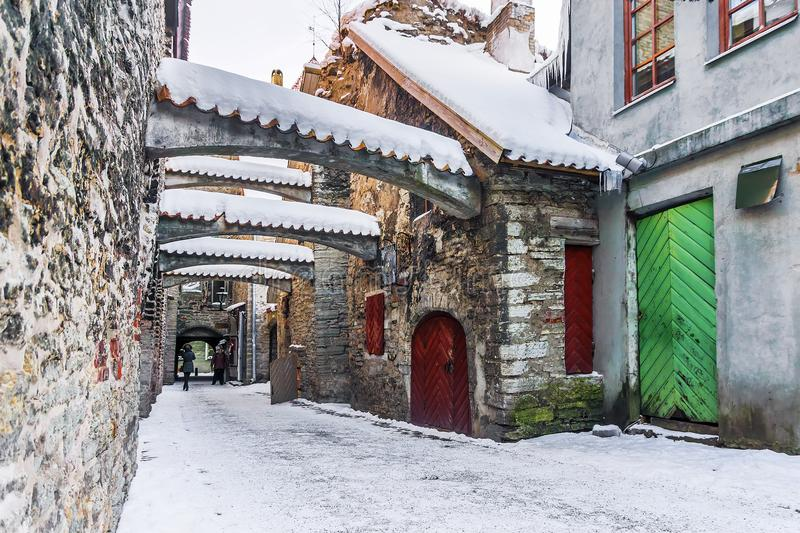Passage för ` s för St Catherine i Tallinn estonia royaltyfria foton