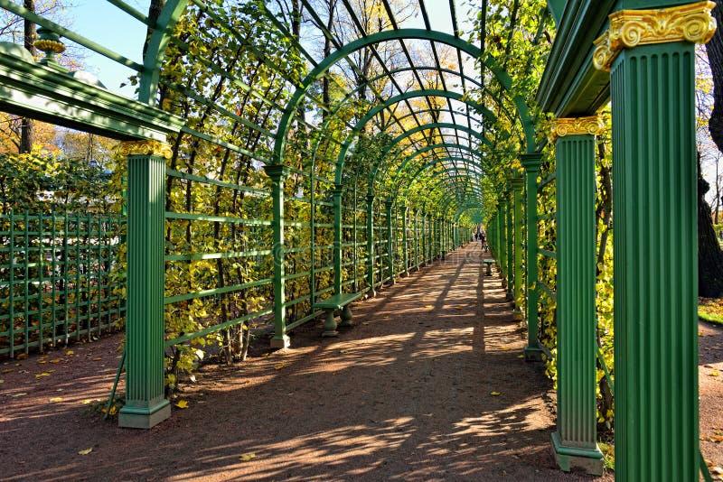 Passage i sommarträdgård, arkivbild