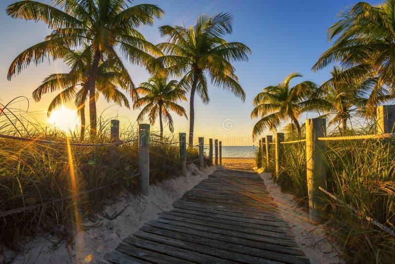 Passagem à praia no nascer do sol fotos de stock