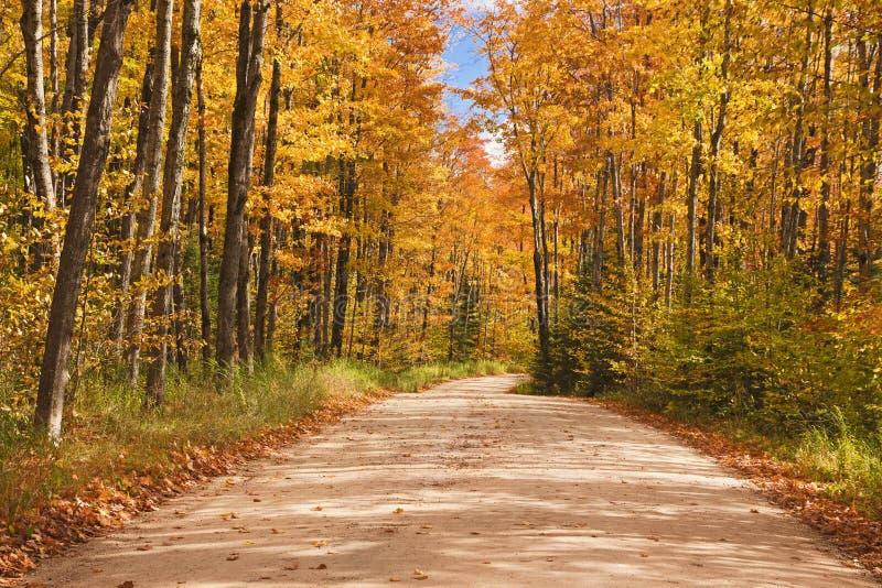 Passagem bonita dentro com cores da queda em Michigan EUA foto de stock