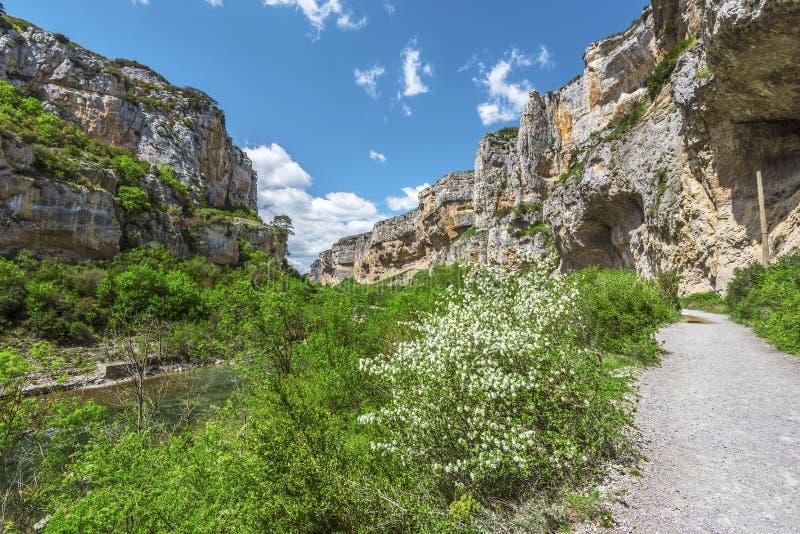 Passagem da caminhada ao longo da garganta de Lumbier no espanhol Navarra fotografia de stock