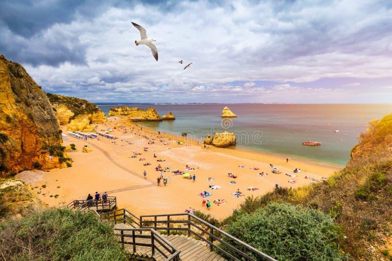 Passagem de madeira à praia famosa de Dona Ana do Praia com água do mar de turquesa e penhascos, gaivotas de voo sobre a praia, P imagem de stock