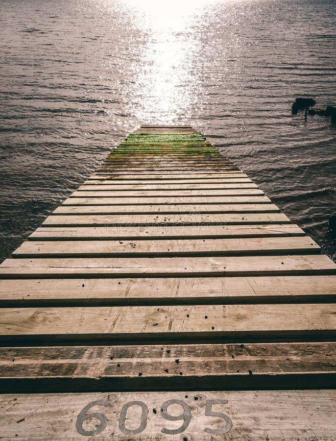 Passagem de madeira do molhe da prancha que conduz para baixo para molhar com musgo e texto fotos de stock royalty free