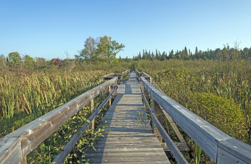 Passagem de madeira em um pântano da região selvagem fotos de stock royalty free