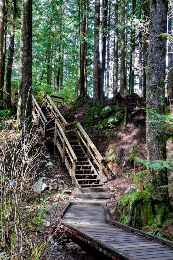 Passagem de madeira em uma fuga de caminhada fotografia de stock royalty free
