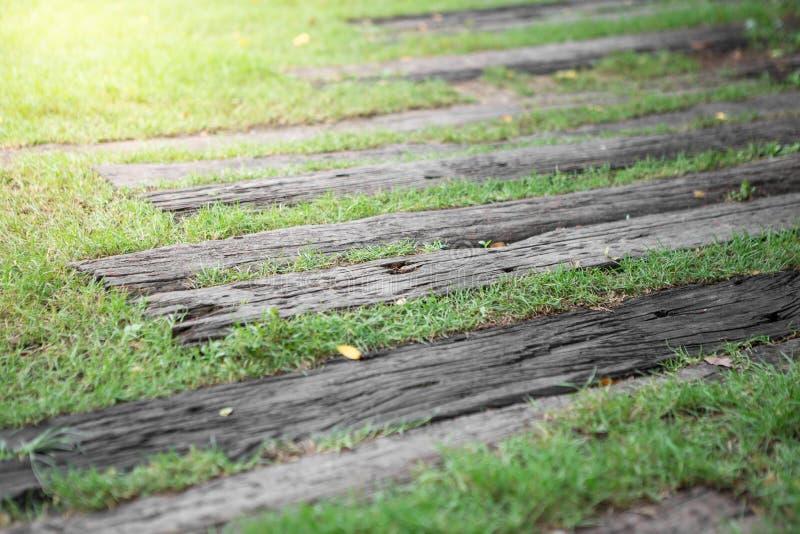 Passagem de madeira no gramado imagens de stock royalty free