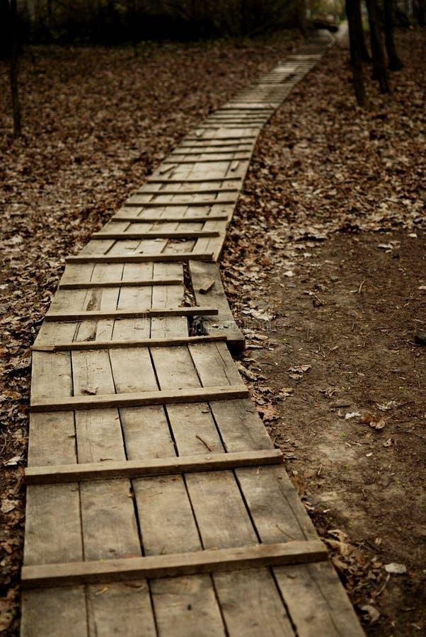Passagem de madeira no outono sem a pessoa imagens de stock royalty free