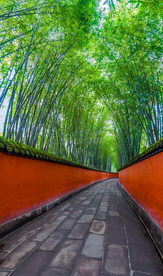 Passagem entre as paredes vermelhas cercadas por bambus, chengdu, porcelana foto de stock royalty free